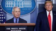 Topadviseur Witte Huis en viroloog Fauci spreekt Trump tegen: coronavirus niet in Chinees lab gemaakt of ontsnapt