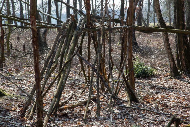 Bomenpark, Heesch. Beeld Theo Audenaerd