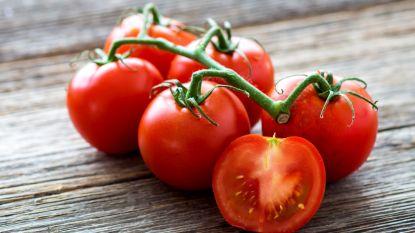 Waarom je tomaten beter niet in de koelkast bewaart