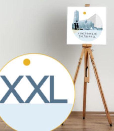 Reuring in de stad: kunstrondje XXL en koopzondag in Zaltbommel
