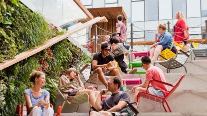 De 15 beste terrasjes om te genieten van het eerste lenteweer