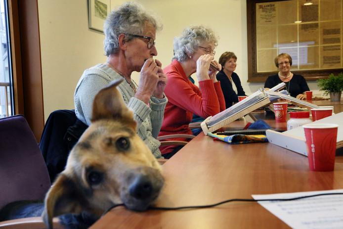 Hond Saar komt wekelijks ook mee naar les. De dames Van Wijnen en Wapperom spelen, terwijl Tineke Hoogerwerf en mevrouw Stek luisteren (vlnr).