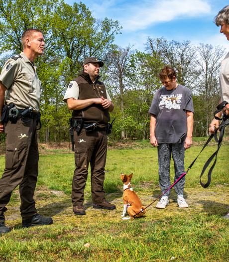 Op pad met twee boswachters: extra controles op loslopende honden vanwege broedtijd