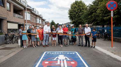"""Eerste fietsstraat opent, maar stadsbestuur wil meer: """"Tot zeven kilometer fietsstraten en verbindingen dwars door de stad"""""""