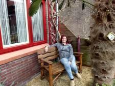 In de Pioenroosstraat in Eindhoven: Onder de palmboom in de voortuin