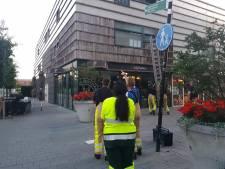 Applaus na reddingsactie voor mus in Zwolle : 'Elk gered diertje is er één'
