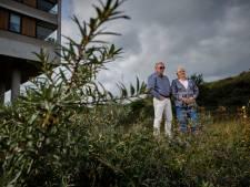 Bewoners vrezen voor kale vlakte door aanleg Hoekse Lijn