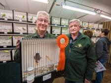 Goudvink Gerrit Fokke goed voor de hoofdprijs op vogelshow Vriezenveen
