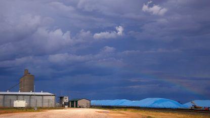 Wereldwijde graanoogst valt lager uit dan verbruik