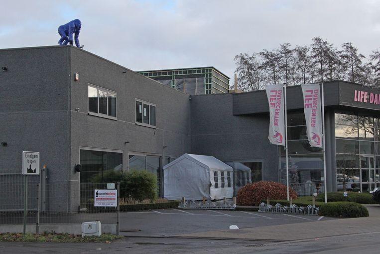In Izegem prijkt sinds kort een aap op het gebouw van dansschool Life Danscenter.