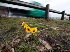 Twee jonge paren bij doden crash Helmond: 'Ze zouden dit jaar trouwen'
