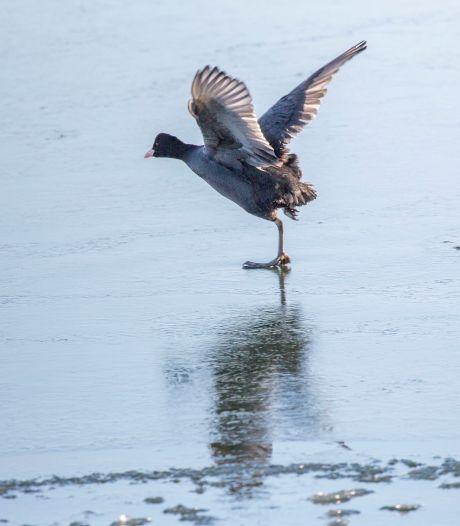 Zaterdag mogelijk sneeuw in Nederland, ook kans op schaatsen