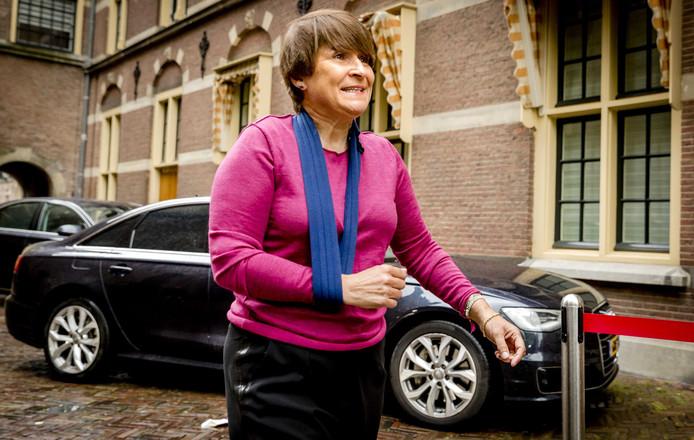 Minister Lilianne Ploumen voor Buitenlandse Handel komt aan op het Binnenhof voor de ministerraad.