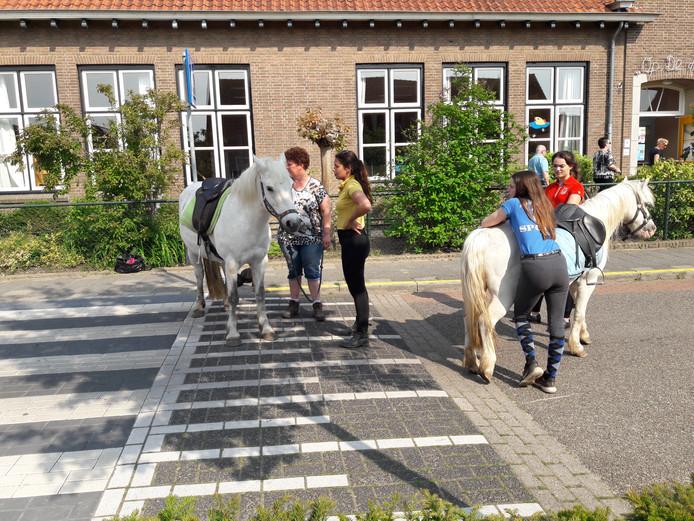 Pony's wachten op hun klanten.
