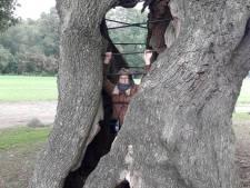 Vrouw zit 'gevangen' in een boom