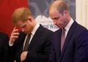 Prins William en zijn broer prins Harry
