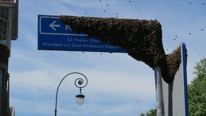 Het bijenvolk was zo groot dat het straatnaambordje bijna verdween.