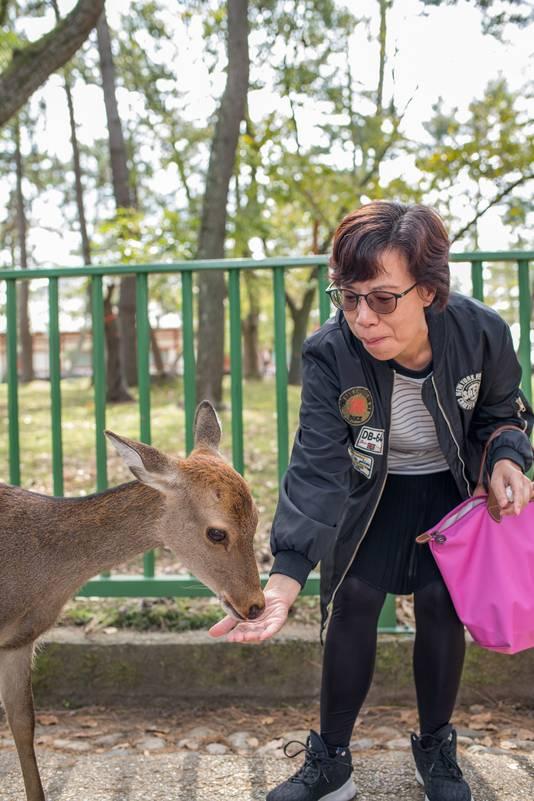 Een Japanse vrouw voert een hert in het Nara Park.
