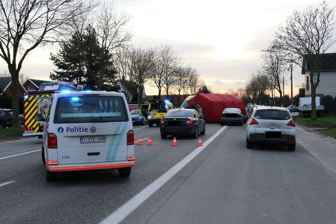 Het ongeval gebeurde aan de drukke gewestweg in Zele.