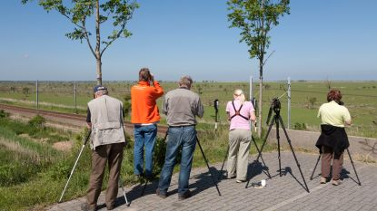 Natuurpunt Rupelstreek organiseert cursus 'Vogels kijken'
