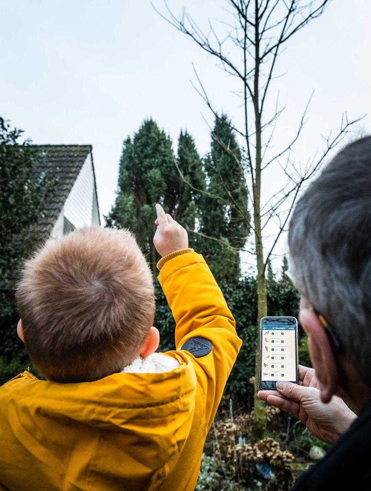 Tel op zaterdag 25 of zondag 26 januari 2020 een kwartier (of langer) de vogels in je tuin of op je balkon.