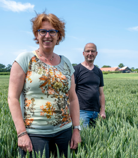 Zeeuwse boeren in nood: 'Als we alleen van ons boerenbedrijf moesten leven, zouden we het niet redden'