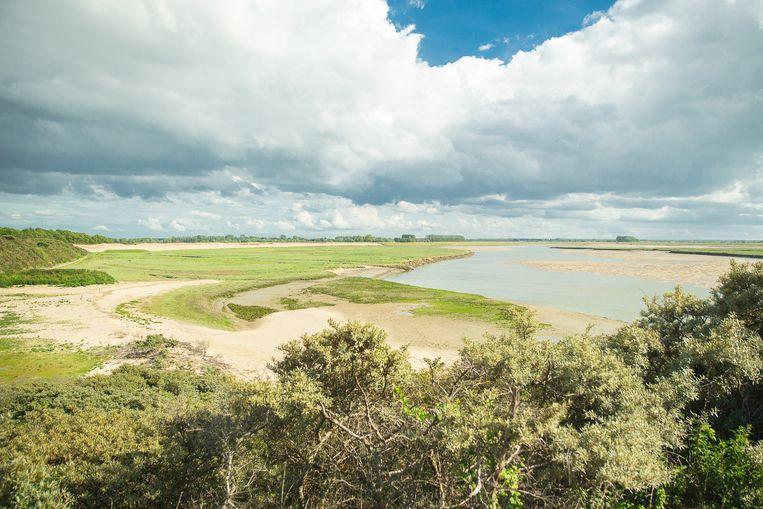 20190616 Knokke-Het Zoute België: Het vernieuwde uitgebreide natuurpark Het Zwin.