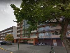 Appartementen in witte flats Wijk bij Duurstede mogelijk gesplitst
