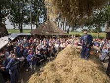 Oogstdag zonder oogst, plan B voor Kampereiland