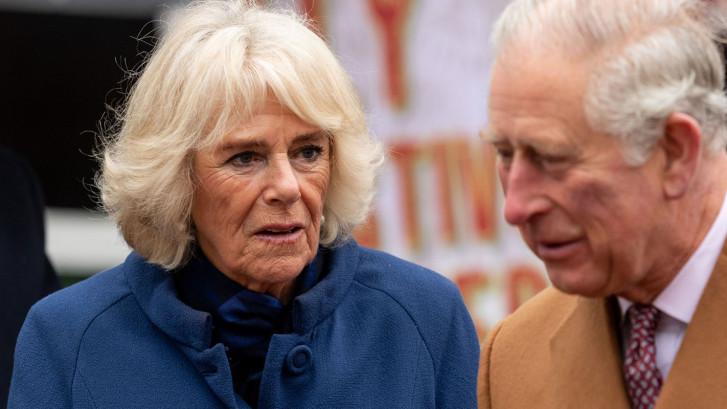 """""""Harry et Meghan vont vous manquer?"""" L'étrange réponse de Camilla Parker Bowles"""