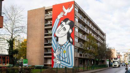 Ontdek de Walls of Boho en andere Antwerpse straatkunst met een app
