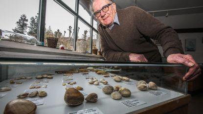 Bewonder gratis unieke schelpencollectie