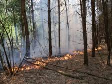 Felle bosbrand bij Eurocamping in Vessem