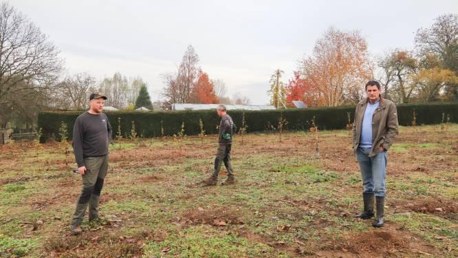 """Gemeente laat 1 hectare bos aanplanten aan Boekelstraat in Elst: """"Hier komen meer dan 2.000 inheemse bomen en struiken"""""""