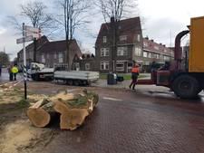 Omgevallen boom op Vondelkade Zwolle
