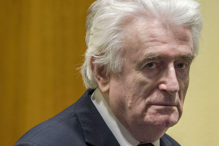 Radovan Karadzic woensdag in de rechtszaal in Den Haag.  Beeld AFP