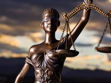 Eis: halfjaar cel voor gruwelijke mishandeling vrouw