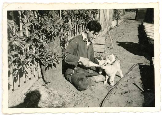 Bruno Schlachet voert een geitje bij Huize Voorburg in Elden, het huis van de in 1942 weggevoerde Palestinapioniers.