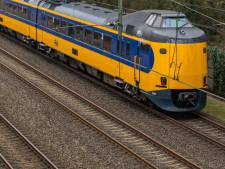 Geen treinen maar bussen tussen Doetinchem en Wehl door boom op het spoor