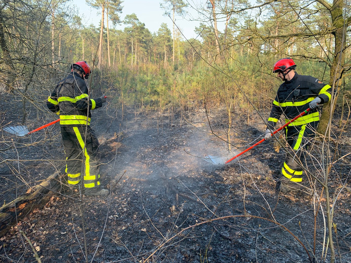 Brandweermannen kloppen het vuur uit in de grond.