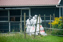 Na de brand bij varkenshouderij Knorhof zijn er mannen in witte pakken, asbest wordt gesaneerd bij de nabijgelegen manege.
