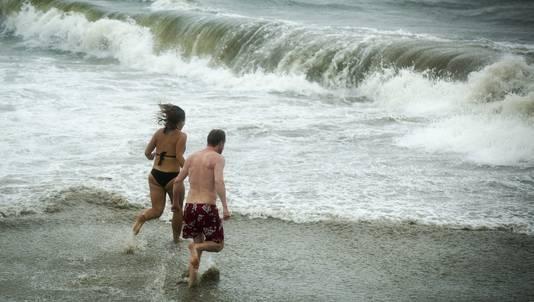 Ondanks het weeralarm besluiten deze twee een duikje te wagen.