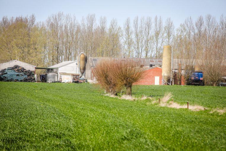 De boerderij in Zevekote waar een cannabisplantage werd gevonden.