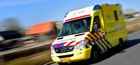 Automobilist (47) uit Gameren overleden na botsing tegen boom in Hedel