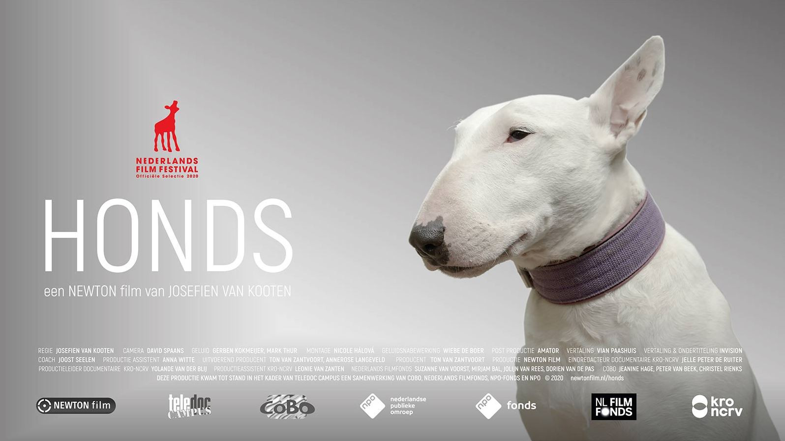Honds, film van Josefien van Kooten