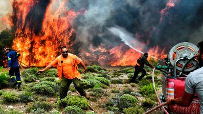 """Griekse brandweer: """"Regering maakte 1.000 kleine fouten die hebben geleid tot ongezien hoge dodentol"""""""