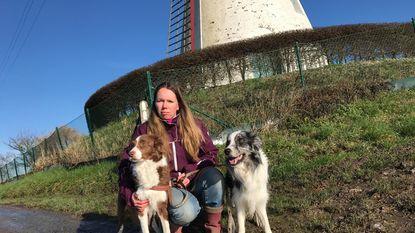 Al twee honden besmet: baasjes, opgepast voor dodelijke teek