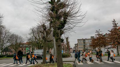 """Naar een vernieuwde Elisabethwijk: """"Circulatiemaatregelen aangrijpen om publieke ruimte grondig op te waarderen"""""""