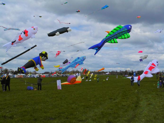 archief: vliegerfestival
