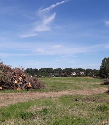 'Middelburg kapt te snel en snoeit te rigoureus', vinden bewoners Erasmuswijk